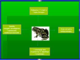 Зиянды омыртқасыздармен қоректеніп, пайдасын тигізеді. Пайдалы құстарға қорек