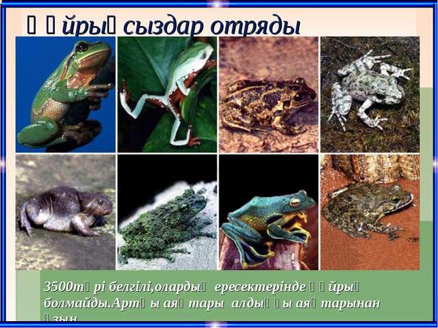 Құйрықсыздар отряды 3500түрі белгілі,олардың ересектерінде құйрық болмайды.Ар...