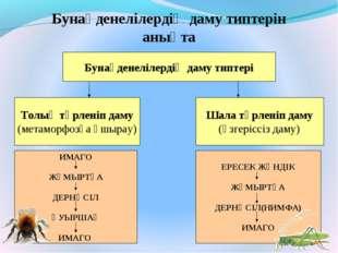 Бунақденелілердің даму типтері Бунақденелілердің даму типтерін анықта Толық т
