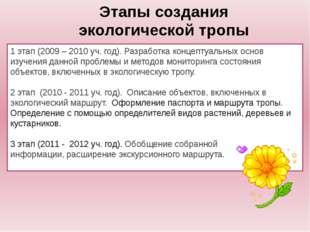 1 этап (2009 – 2010 уч. год). Разработка концептуальных основ изучения данной