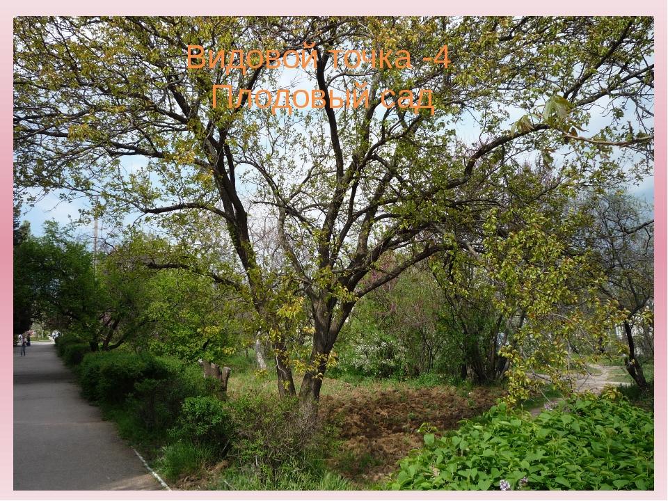 Видовой точка -4 Плодовый сад