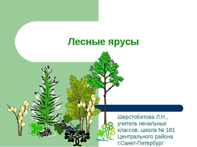 Лесные ярусы Шерстобитова Л.Н., учитель начальных классов, школа № 181 Центра...