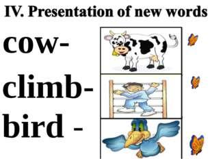 bird - cow- сlimb- -