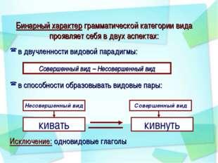 Бинарный характер грамматической категории вида проявляет себя в двух аспекта