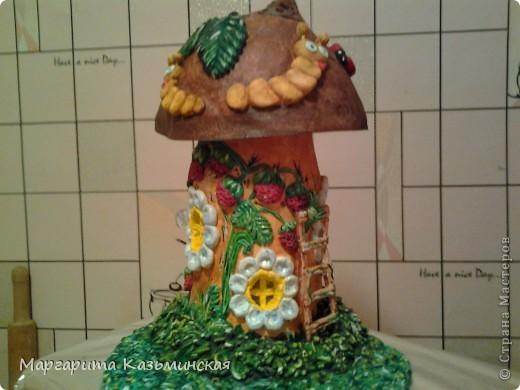 Поделка изделие Лепка домик для насекомых -грибок-светильник Боровичок Тесто соленое фото 18