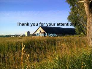 Thank you for your attention! Good bye.
