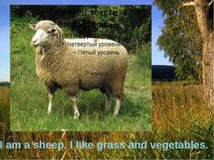 I am a sheep. I like grass and vegetables.