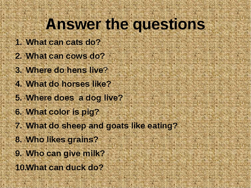 Answer the questions What can cats do? What can cows do? Where do hens live?...