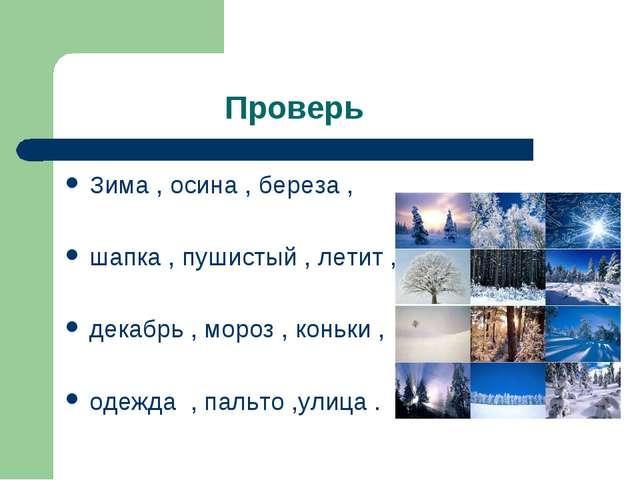 Проверь Зима , осина , береза , шапка , пушистый , летит , декабрь , мороз ,...