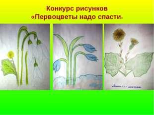 Конкурс рисунков «Первоцветы надо спасти»