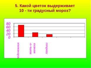 5. Какой цветок выдерживает 10 - ти градусный мороз?