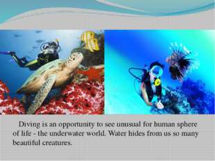 Diving is an opportunity to see unusual for human sphere of life - the under