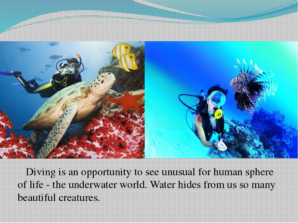Diving is an opportunity to see unusual for human sphere of life - the under...