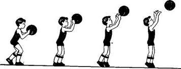D:\444\дакументый\ДЕНЕ ШЫНЫҚТЫРУ\спорт\БАСКЕТБОЛ\images (6).jpg