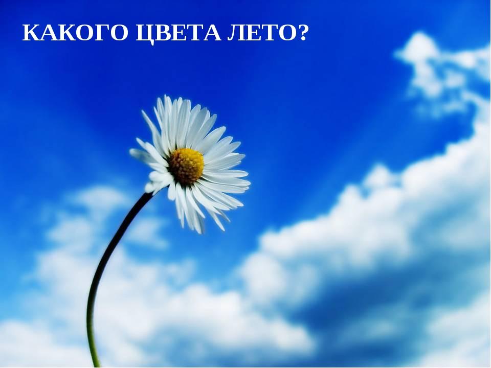 КАКОГО ЦВЕТА ЛЕТО? Лазарева Лидия Андреевна, учитель начальных классов, Рижск...