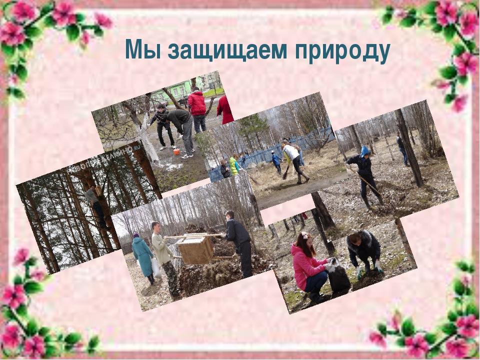 Мы защищаем природу