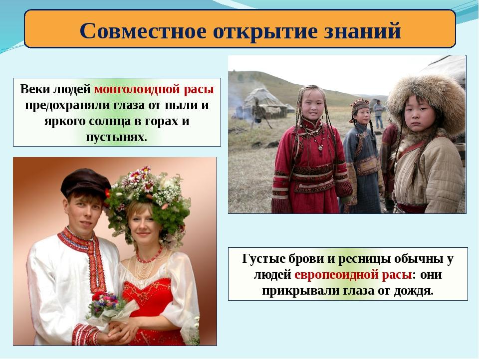 Совместное открытие знаний Веки людей монголоидной расы предохраняли глаза от...