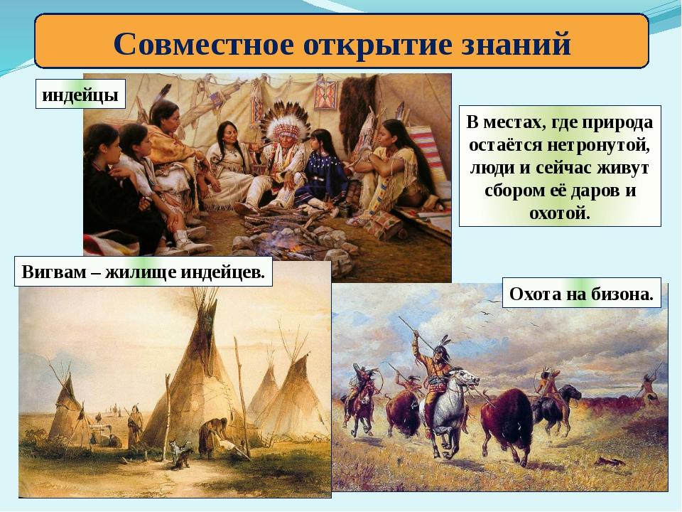 Совместное открытие знаний индейцы Вигвам – жилище индейцев. Охота на бизона....