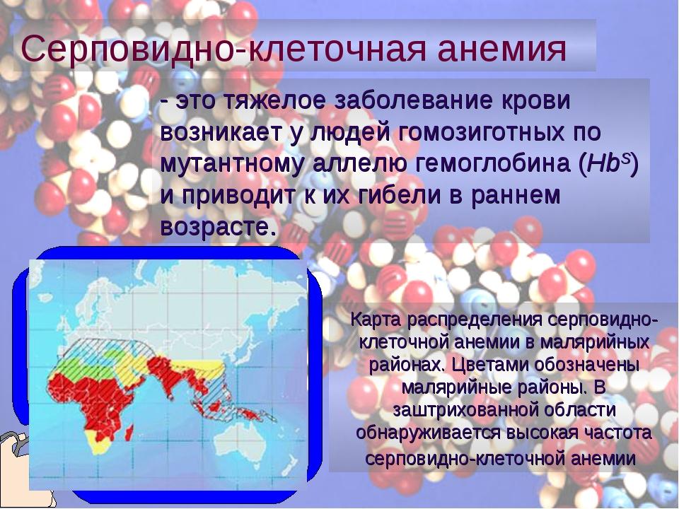 - это тяжелое заболевание крови возникает у людей гомозиготных по мутантному...
