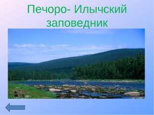 Печоро- Илычский заповедник
