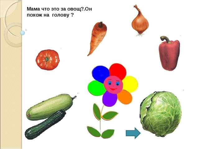 Мама что это за овощ?.Он похож на голову ?