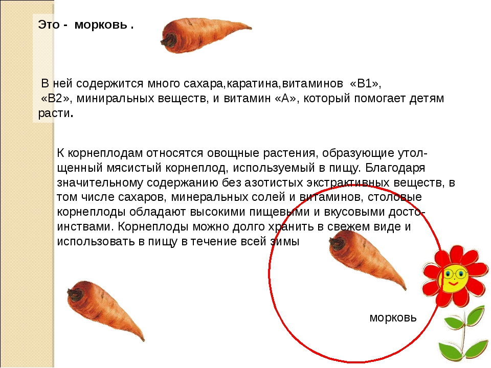 Это - морковь . В ней содержится много сахара,каратина,витаминов «В1», «В2»,...
