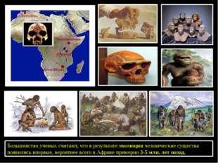 Большинство ученых считают, что в результате эволюции человеческие существа п