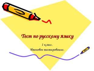 Тест по русскому языку 1 класс. Итоговое тестирование.