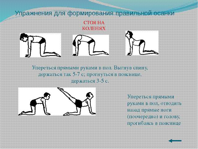 Упражнения для формирования правильной осанки ЛЕЖА НА ЖИВОТЕ Упереться в пол...
