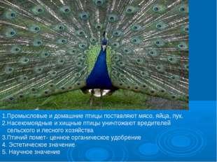 1.Промысловые и домашние птицы поставляют мясо, яйца, пух. 2.Насекомоядные и
