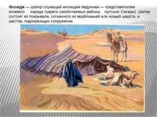Фелидж — шатер служащий жилищем бедуинам — представителям кочевого народа туа