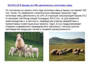 2014.01.18В Крыму на 14% увеличилось поголовье овец По состоянию на начало э