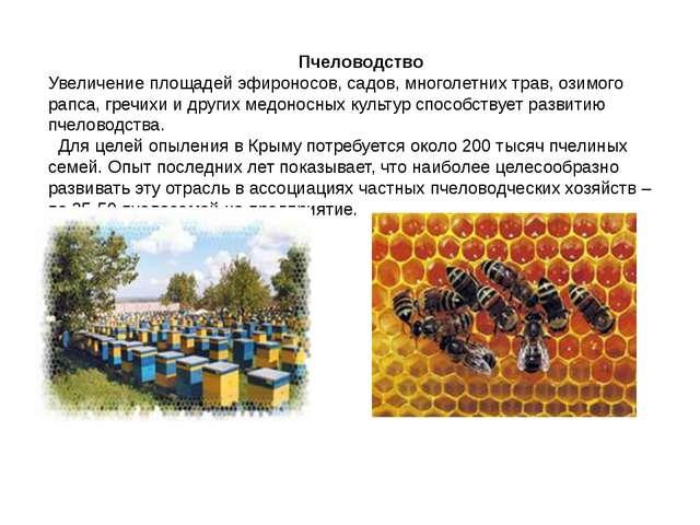 Пчеловодство Увеличение площадей эфироносов, садов, многолетних трав, озимог...