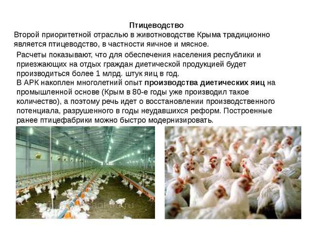 Птицеводство Второй приоритетной отраслью в животноводстве Крыма традиционно...