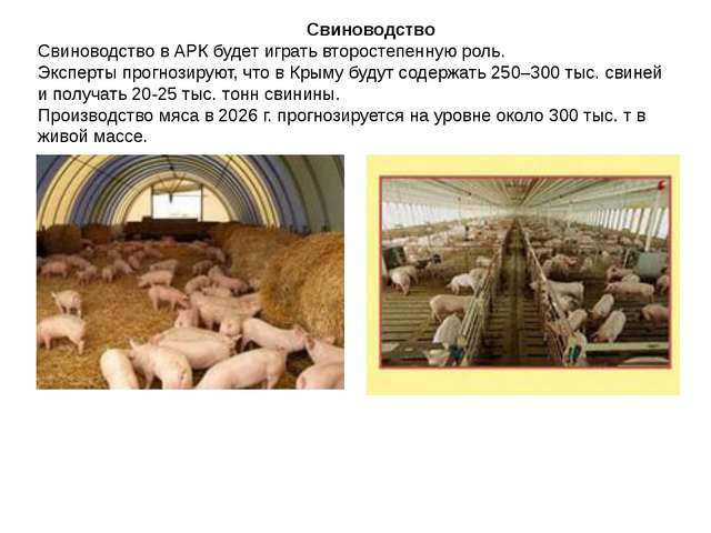 Свиноводство Свиноводство в АРК будет играть второстепенную роль. Эксперты п...