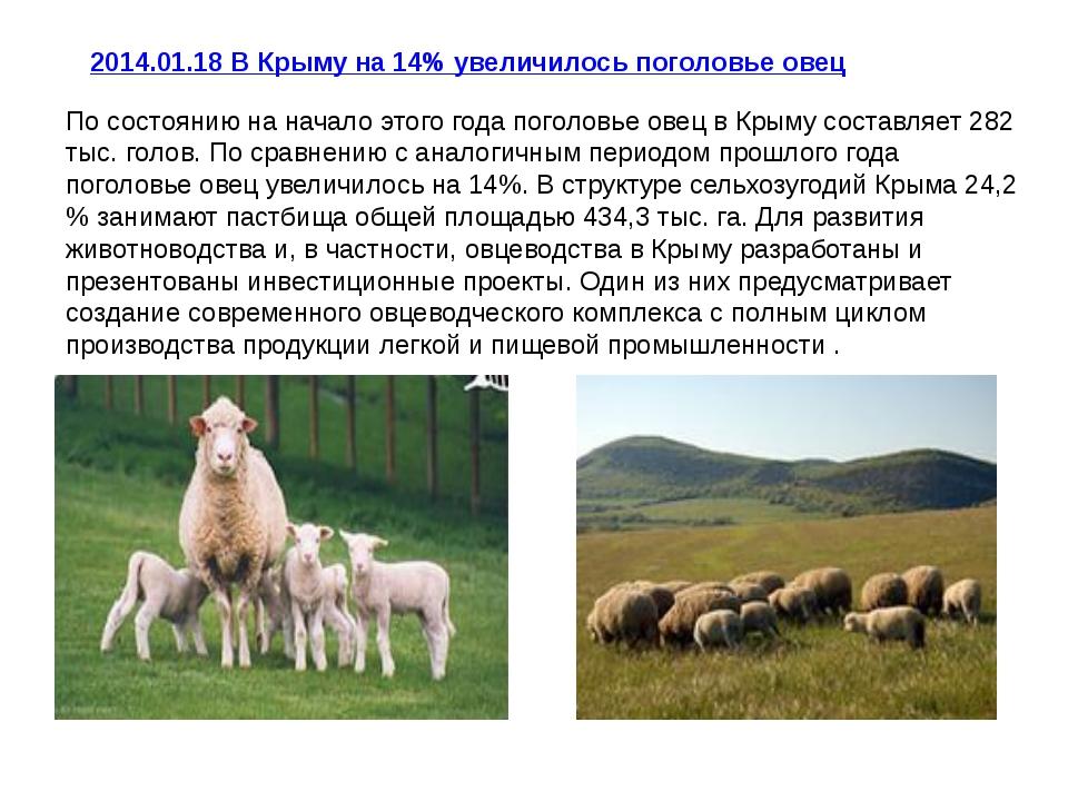 2014.01.18В Крыму на 14% увеличилось поголовье овец По состоянию на начало э...
