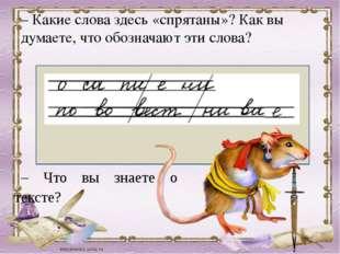 – Какие слова здесь «спрятаны»? Как вы думаете, что обозначают эти слова? –