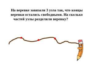 На веревке завязали 3 узла так, что концы веревки остались свободными. На ско