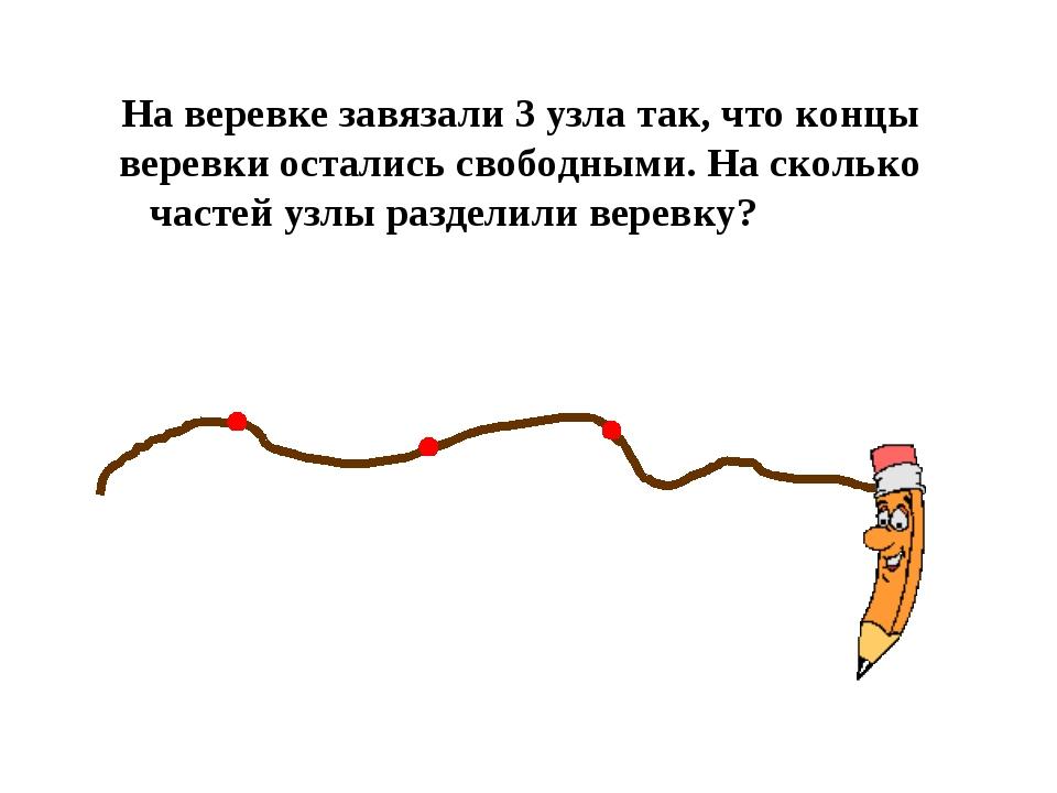 На веревке завязали 3 узла так, что концы веревки остались свободными. На ско...