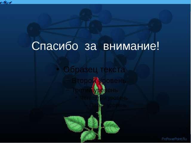 Спасибо за внимание! ProPowerPoint.Ru ProPowerPoint.Ru