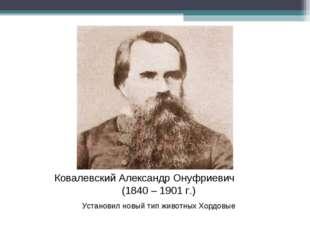 Ковалевский Александр Онуфриевич (1840 – 1901 г.) Установил новый тип животны