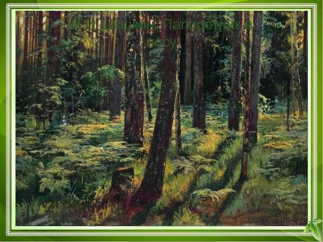 Лес – это устойчивая экосистема, состоящая из трёх «этажей» Средний «этаж» к...