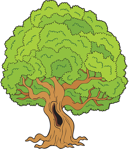 free_tree_shutterstock_48351640_web.png