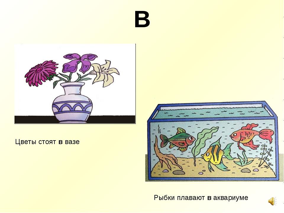 В Цветы стоят в вазе Рыбки плавают в аквариуме