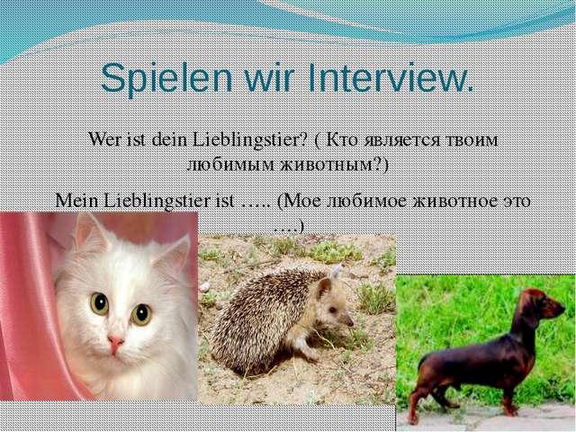 Spielen wir Interview. Wer ist dein Lieblingstier? ( Кто является твоим любим...