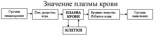 C:\Program Files\Образовательные комплексы\Биология, 8 кл. Человек\edu_r75_bio8\data\res\res03B443A9-0A01-022A-0013-5133C0C68513