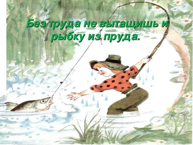 Без труда не вытащишь и рыбку из пруда.