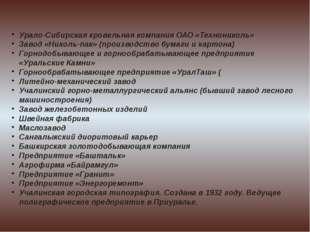 Урало-Сибирская кровельная компания ОАО «Технониколь» Завод «Николь-пак» (про