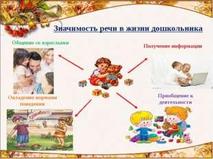 Значимость речи в жизни дошкольника Общение со взрослыми Получение информаци