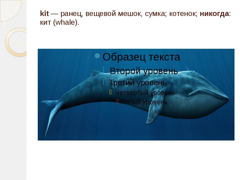 kit — ранец, вещевой мешок, сумка; котенок; никогда: кит (whale).